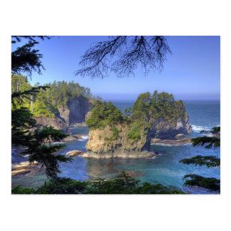 Seastacks, Makah Nation Tribal Lands, Cape Postcard