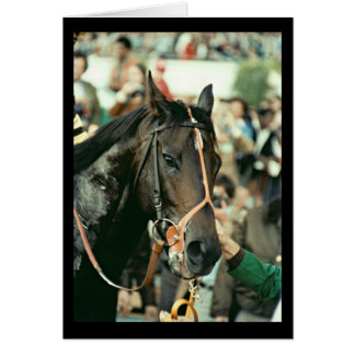 Seattle Slew Thoroughbred 1978 Card