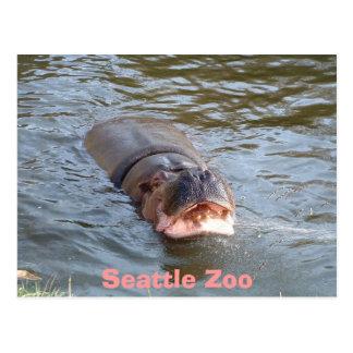 Seattle Zoo Postcard