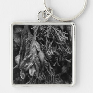 Seaweed in Black and White. Keychain