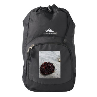 Seaweed Roots Backpack