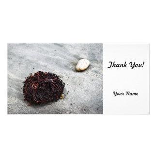 Seaweed Roots Customised Photo Card