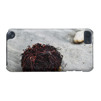 Seaweed Roots iPod Touch (5th Generation) Cases