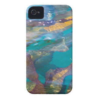 Seaweed Strands iPhone 4 Case-Mate Case