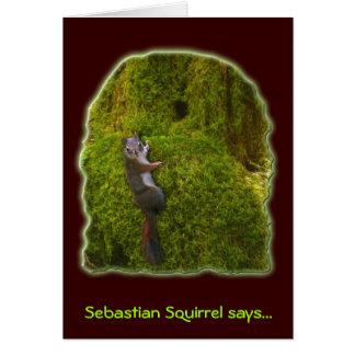 SEBASTIAN SQUIRREL Note Cards