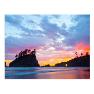 Second Beach at sunset, Washington Postcard