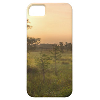 Second Dawn in Fakahatchee Strand iPhone 5 Case