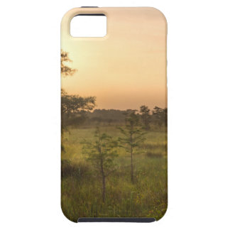Second Dawn in Fakahatchee Strand iPhone 5 Cover