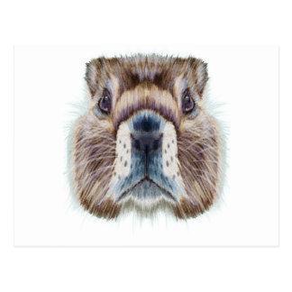 Second February - Marmot Day - Appreciation Day Postcard