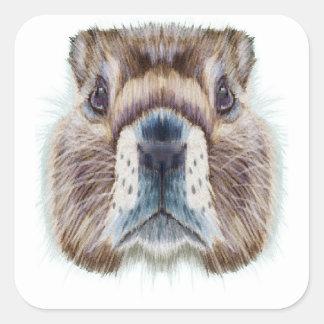 Second February - Marmot Day - Appreciation Day Square Sticker
