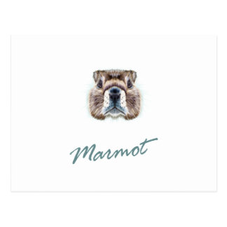 Second February - Marmot Day Postcard