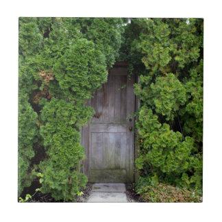 Secret Garden 2 Tile