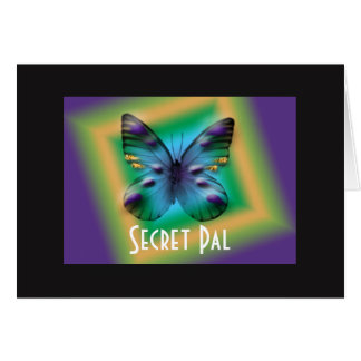 Secret Pal Boxed Butterfly Greeting Card