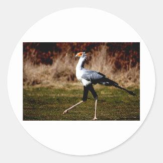 Secretary Bird Classic Round Sticker