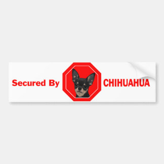 Secured by Chihuahua Bumper Sticker