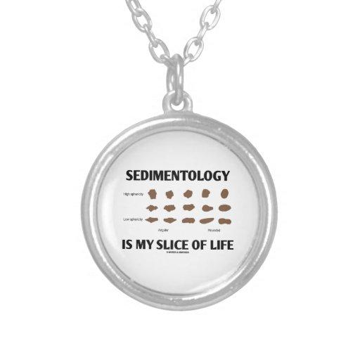 Sedimentology Is My Slice Of Life (Rocks) Pendant