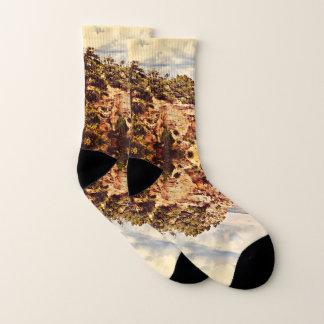 Sedona Landscape Custom Unisex Socks 1