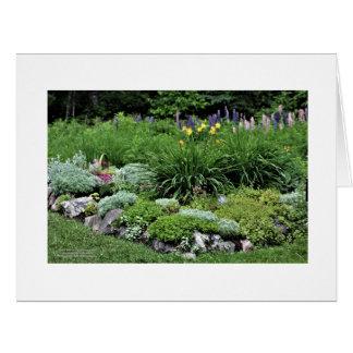 Sedum Artemisia Dianthus Rock Bed Lupine Lillies Card