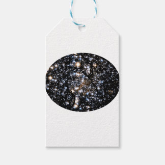 See The Dog in Space Gift Tags