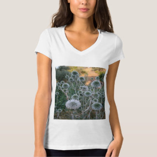 Seed Head Of Leek Flower Allium Sphaerocephalon T-Shirt