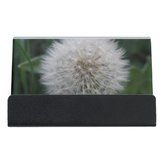 Seeding Dandelion Flower Business Card Holder