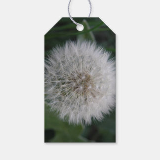 Seeding Dandelion Flower Custom Gift tags
