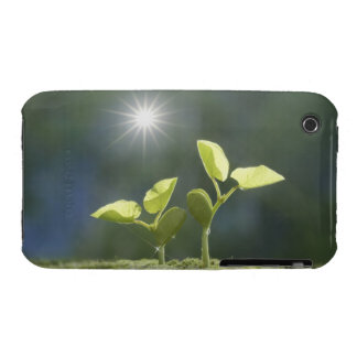 Seedlings, close up, lens flare iPhone 3 case