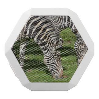 Seeing Double Zebras White Boombot Rex Bluetooth Speaker