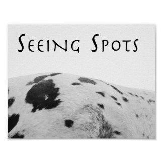 Seeing Spots Poster