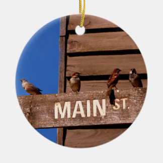 Seeking Direction Ceramic Ornament