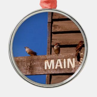 Seeking Direction Metal Ornament