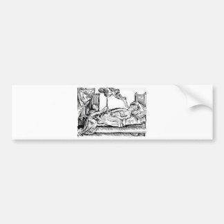 Seele Entweicht - Soul Leaving Body Bumper Sticker