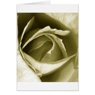 seelegs (v1) greeting card