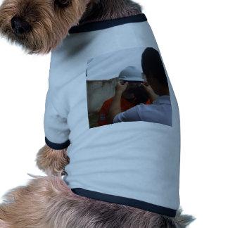 Segurança todo dia roupas para cães