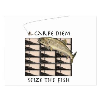Seize the Fish Postcard