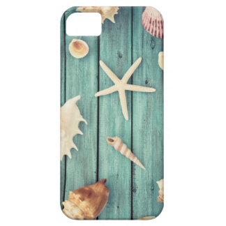 Selection Of Seashells iPhone 5 Cover
