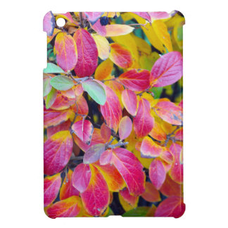 Selective focus on front leaves iPad mini cover