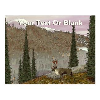 Selkirk Caribou Postcard