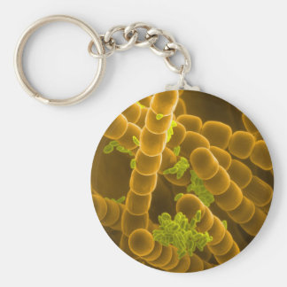 SEM image of Tradescantia Pollen and Stamens Key Ring
