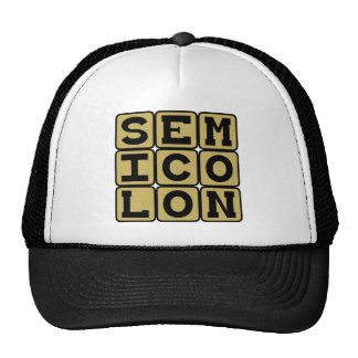 Semicolon, Type of Punctuation Hat