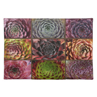 Sempervivum - Houseleek - Hauswurz - Collage Placemat