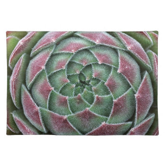 Sempervivum Ohio Burgundy Placemat