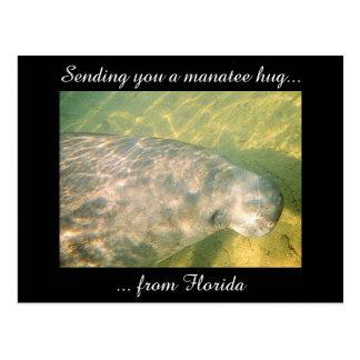 Sending You a Manatee Hug from Florida postcard