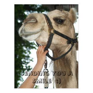 Sending You a Smile  :) Postcard
