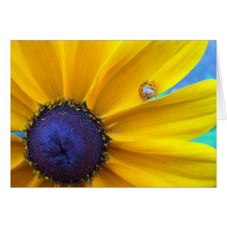 Sending you some sunshine card