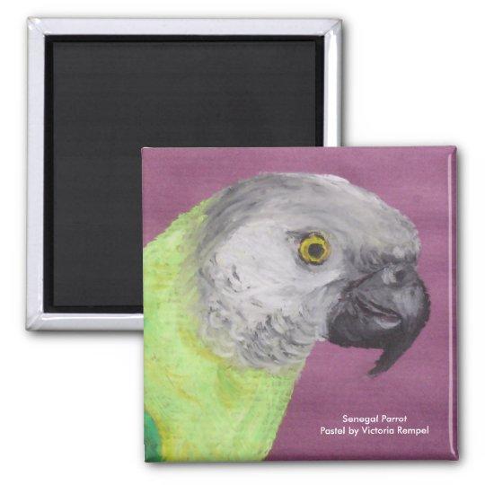 Senegal Parrot Pastel Magnet