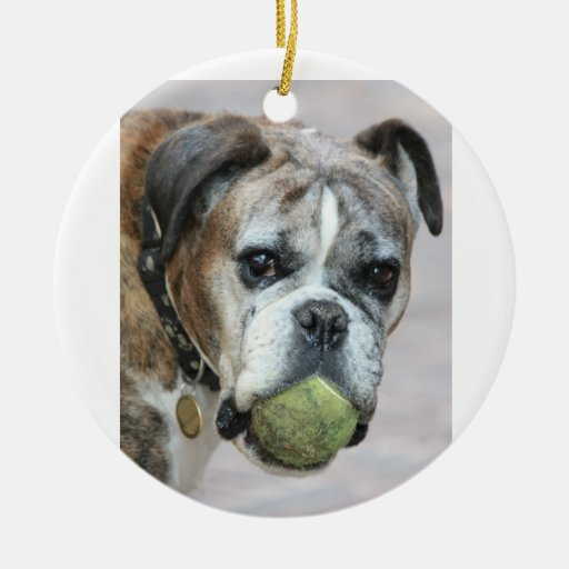 senior boxer ornament