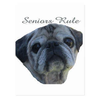 seniors rule postcard