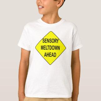 Sensory meltdown sign shirt
