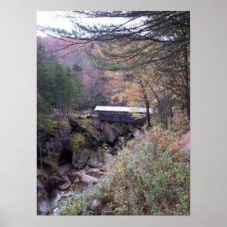 Sentinel Bridge Fall Foliage Poster